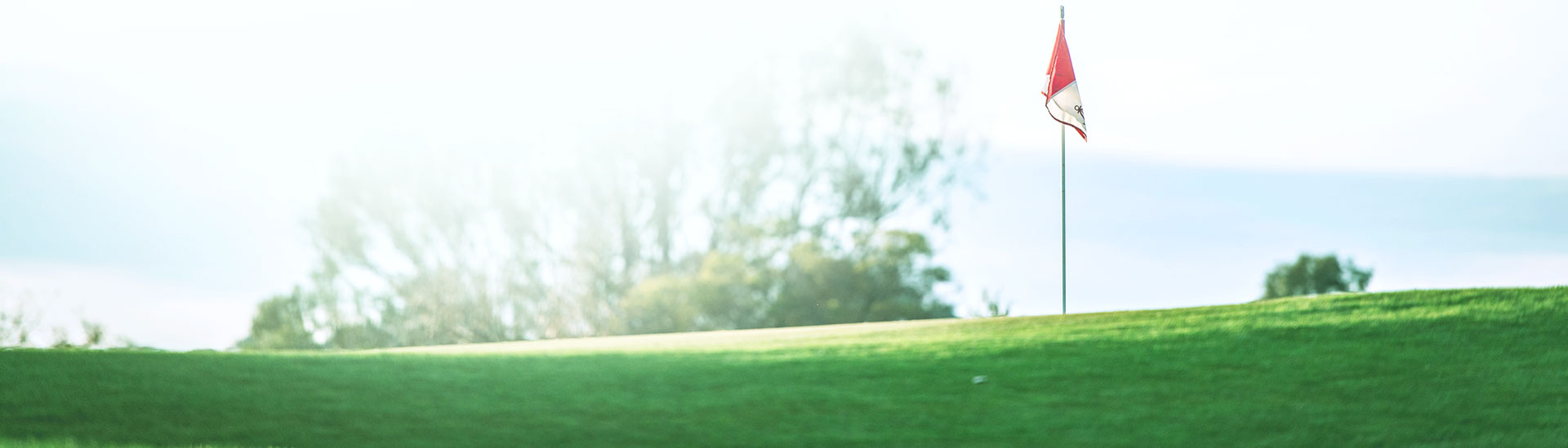 Golf Practice Diary: Fitness Edge